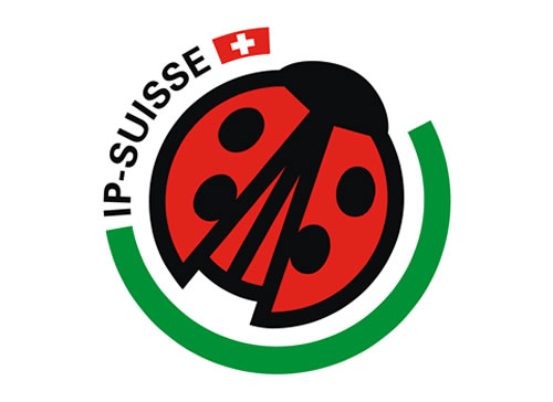 IP Suisse